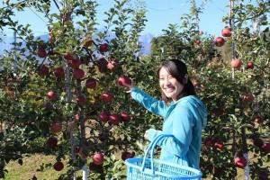 minemura orchards